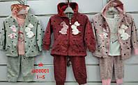 Спортивный костюм для девочек оптом, Setty Koop, 3-8 рр