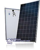 Сонячна панель Amerisolar AS-6P30 280W poly, 5bb, фото 1