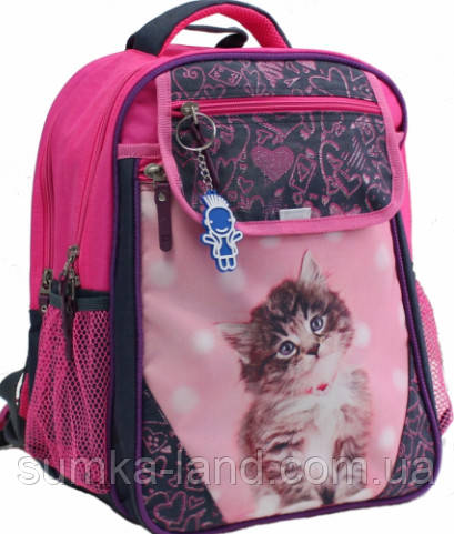 Детский школьный рюкзак для девочки Bagland Отличник с ортопедической спинкой (принт серый кот 65) 20 л