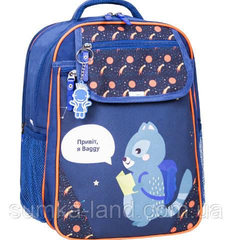 Детский школьный рюкзак Bagland Отличник с ортопедической спинкой (принт синий 429) 20 л