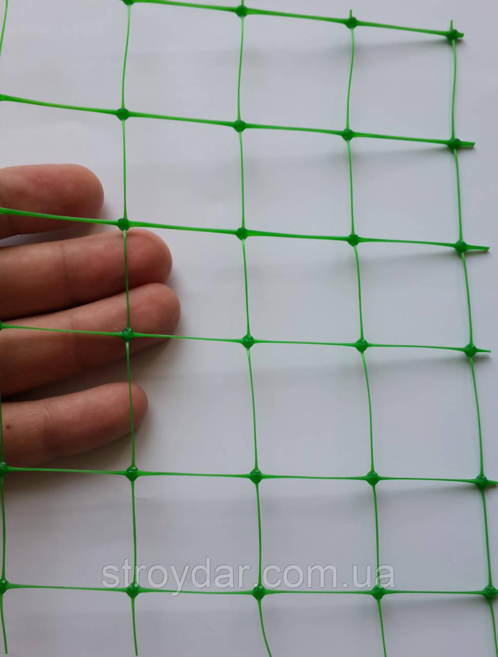 Пластикова сітка універсальна Конюшина У 30 Зелена