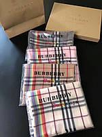 Палантины шарфы в стиле Вurberry (Барбери) радуга