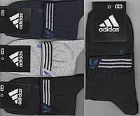 Носки мужские демисезонные х/б спортивные Adidas, Athletic Sports, средние, ассорти, 12541