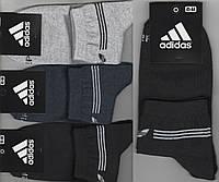 Носки мужские демисезонные х/б спортивные Adidas, Athletic Sports, средние, ассорти, 12588