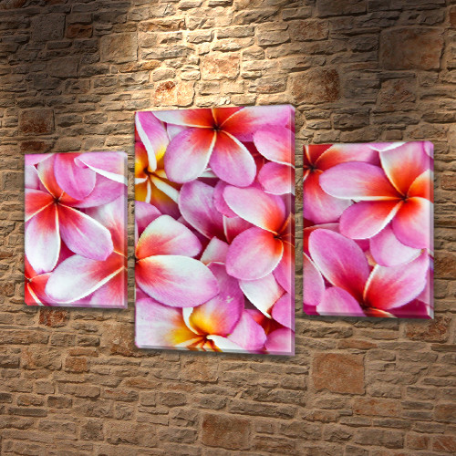 Модульная триптих картина Розовые цветы, на ПВХ ткани, 45х70 см, (30x20-2/45x25)