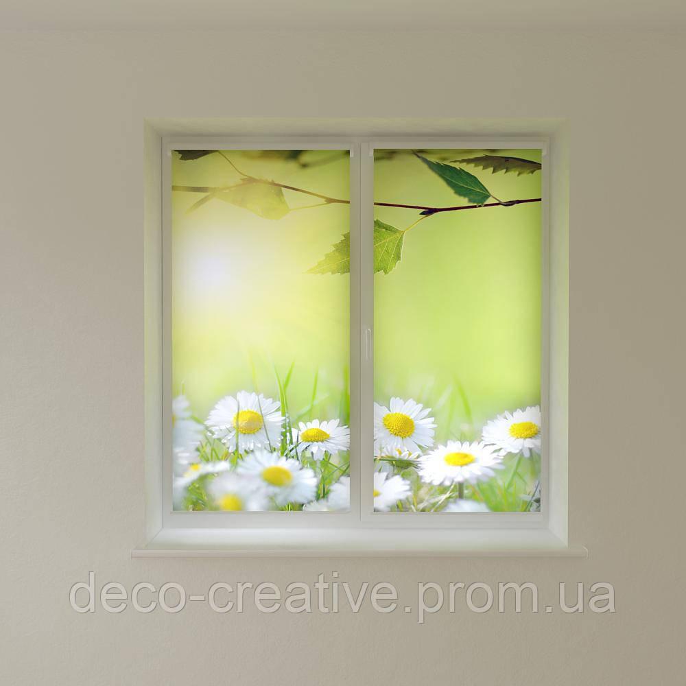 Рулонные фото шторы ромашки
