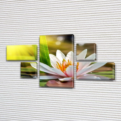 Модульная триптих картина Лилия на воде, на ПВХ ткани, 60x110 см, (18x35-2/18х18-2/60x35)