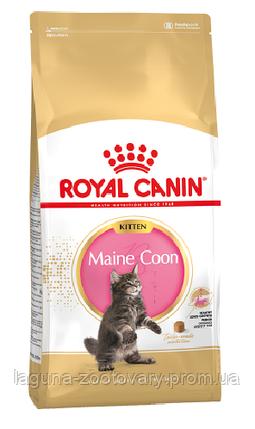 Корм для котят Мейн Кун до 15 месяцев 10кг/ Роял Канин MAINECOON KITTEN, фото 2