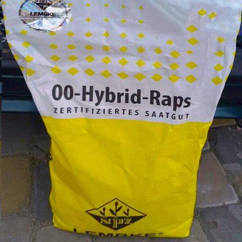 Семена рапса, Лембке, Visby, фото 2