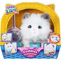 Интерактивный котенок Little Live Pets Cuddles my Dream Kitten