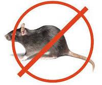 Удаление Грибка Плесени Тараканы Клопы Мыши Крысы Пары ртути Неприятный запах Кропивницкий