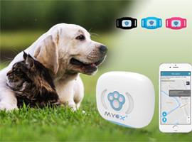 GPS ошейник для животных