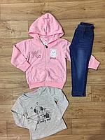 Трикотажный костюм-тройка для девочек  оптом ,F&D,1-5 лет., арт. 3766, фото 2