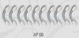 06 AP апликатор La Rosa