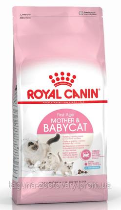 Корм для котят до 4х месяцев, беременных и кормящих кошек, 10кг Роял Канин MOTHER&BABYCAT, фото 2