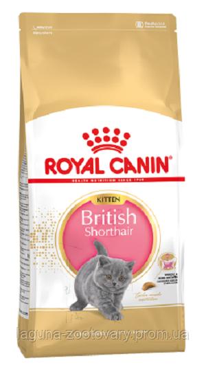 Корм для британских короткошерстных котят до 12 месяцев, 10кг/ Роял Канин KITTEN BRITISH SHORTHAIR