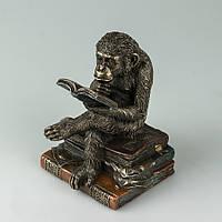 Статуэтка Veronese Обезьяна на книгах 17 см 76560A4