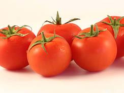 Семена томата для механической уборки