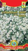 Семена цветов  Ясколка Биберштейна Серебряный ковёр  0,1 г белые (Плазменные семена)