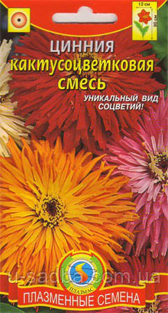 Семена цветов  Цинния кактусовая смесь 0,3 г смесь (Плазменные семена)