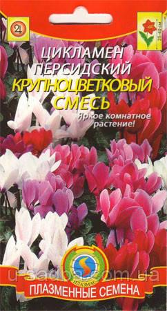 Семена цветов  Цикламен крупноцветковый смесь 3 шт смесь (Плазменные семена)