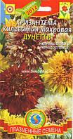 Семена цветов  Хризантема килеватая Дунетти смесь 0,2 г смесь (Плазменные семена)