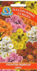 Семена цветов  Хризантема индийская смесь 20 шт смесь (Плазменные семена)