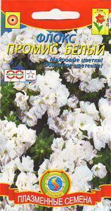 Семена цветов  Флокс махровый Промис Белый 5 шт белые (Плазменные семена)