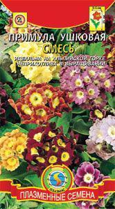 Семена цветов  Примула ушковая смесь 20 шт смесь (Плазменные семена)
