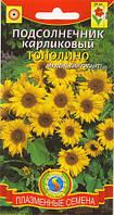 Семена цветов  Подсолнечник карликовый Тополино 8 шт желтые (Плазменные семена)