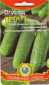 Семена огурцов Огурец Гинга F1 10 штук  (Плазменные семена)
