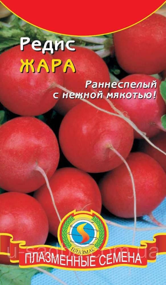 Семена редиса Редис Жара 2 г  (Плазменные семена)