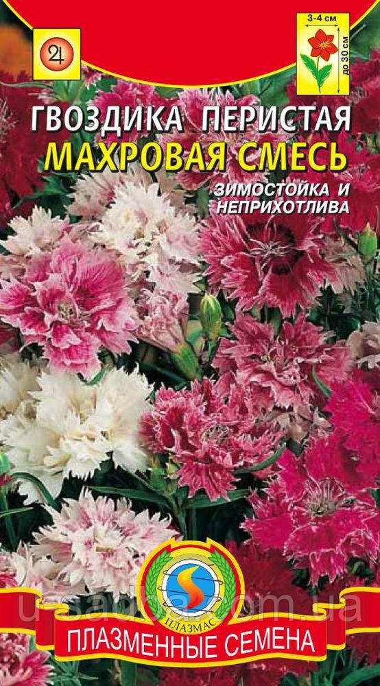 Семена цветов  Гвоздика перистая, махровая смесь 0,2 г смесь (Плазменные семена)