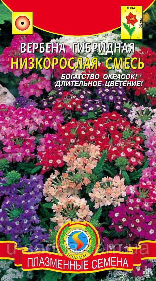 Семена цветов  Вербена гибридная низкорослая смесь  0,15 г смесь (Плазменные семена)