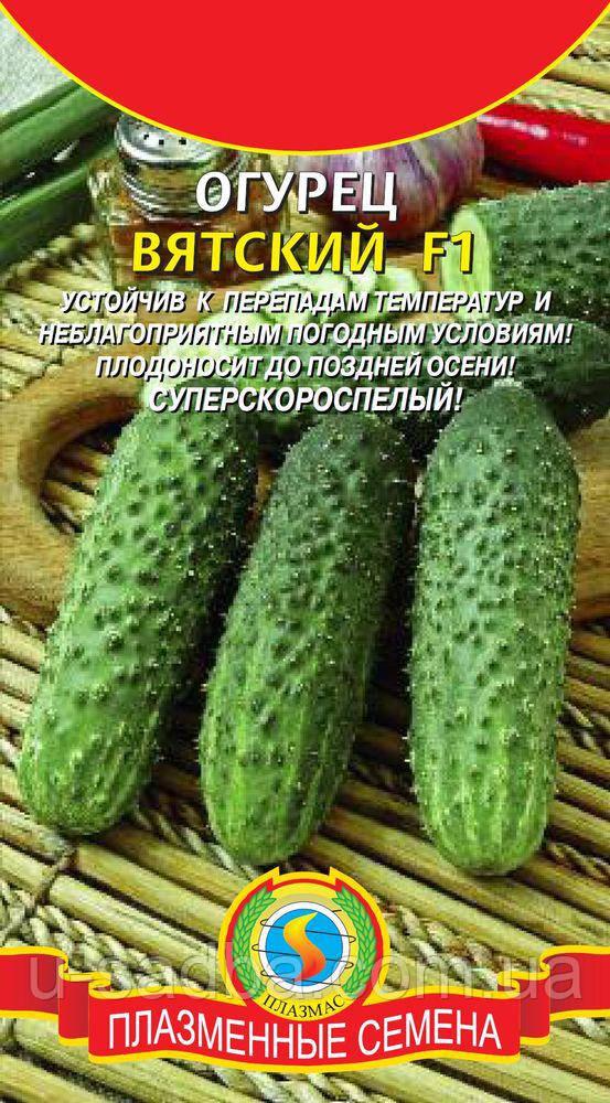 Семена огурцов Огурец Вятский F1 7 штук  (Плазменные семена)