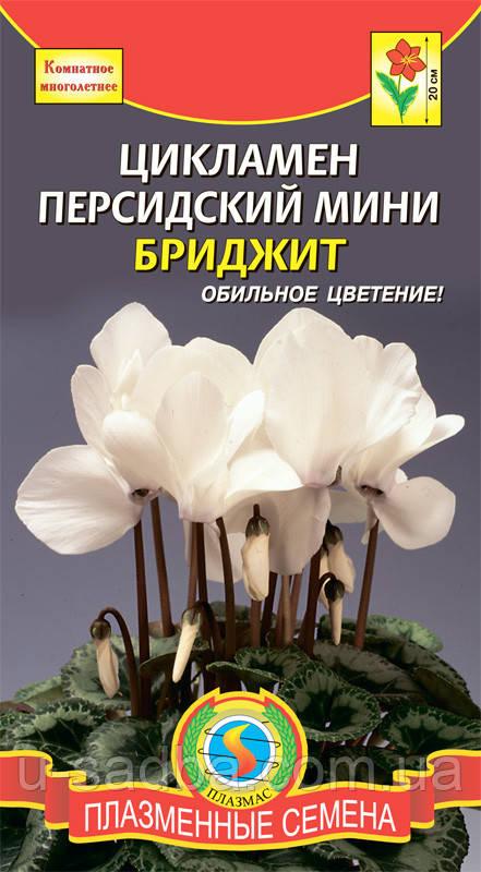 Семена цветов  Цикламен Бриджит мини 3 шт белые (Плазменные семена)