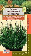 Семена цветов  Ситник мечелистный СтарХеад 3 мультидраже в пробирке не цветущие (Плазменные семена)