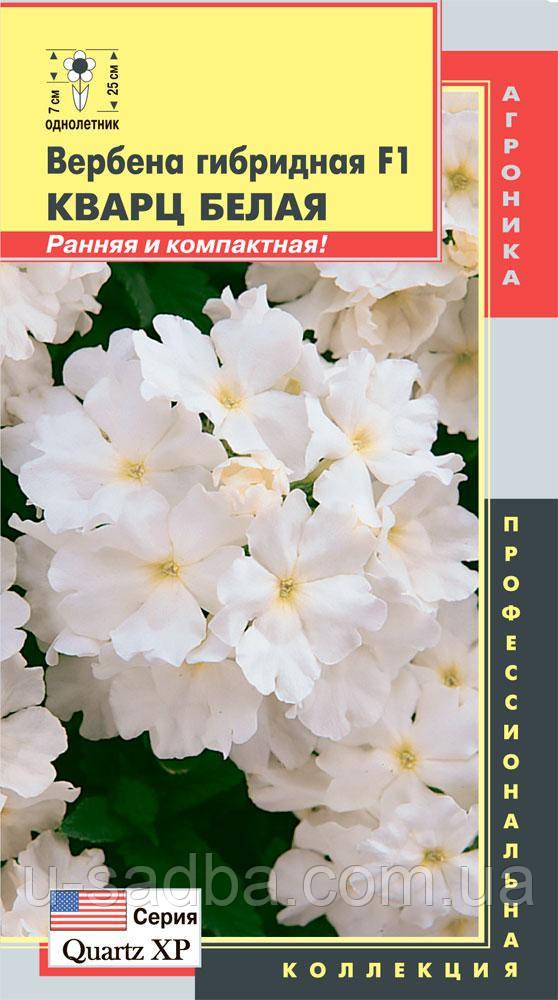 Семена цветов  Вербена гибридная Кварц Белая F1 10 штук белые (Плазменные семена)