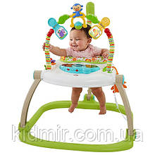 Прыгунки Fisher Price Friends Spacesaver