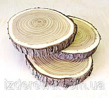 Срез (спил) шлифованный 10-12см