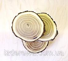 Срез (спил) шлифованый 12-14см