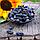 Изюм черный длинный сладкий c хвостиком (Узбекистан)., фото 2