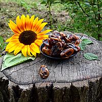Финик шоколадный ОПТ, фото 1