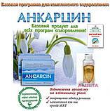 ANCARCIN (Анкарцин) - Комплексное оздоровление вашего организма на клеточном уровне, фото 3