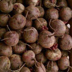 Семена свеклы Пабло F1 (10 000 сем.) Bejo