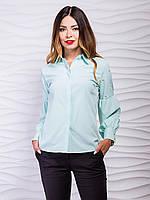 e9542dce5eb Блуза фонарик в категории блузки и туники женские в Украине ...