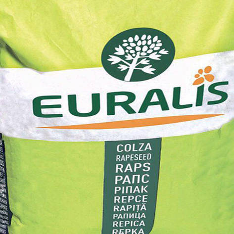 Семена рапса, Евралис, ЕС Меркурий, фото 2