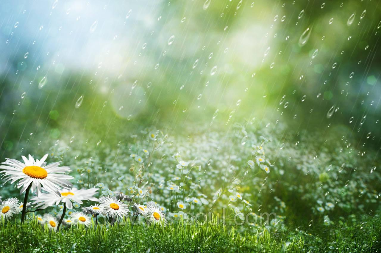 Отдушка  для мыла Летний Дождь, Floressence