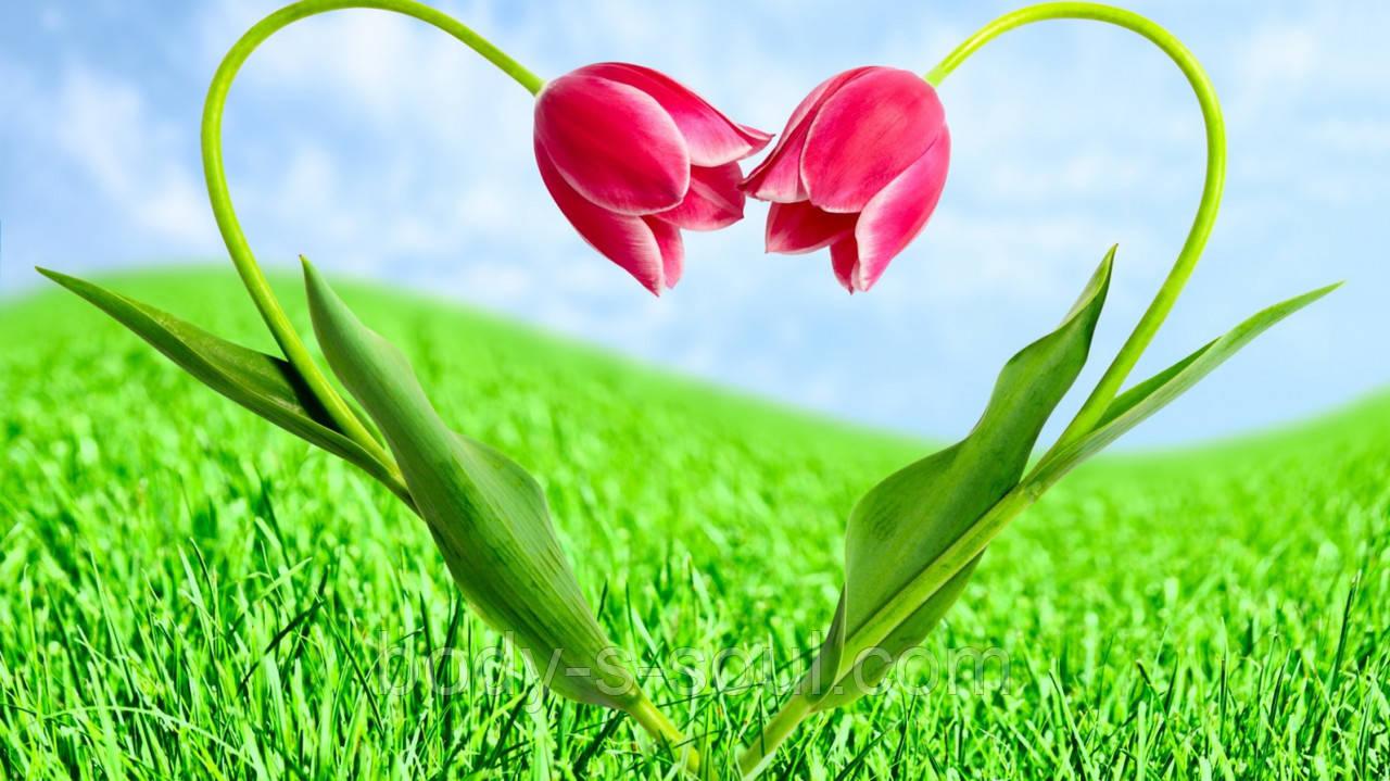 Отдушка  для мыла сад любви, Роскосметика (усиленная концентрация)