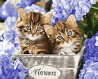 """Раскраска Антистресс для взрослых и детей """"Голубоглазые котята"""", 40 х 50 см , С Коробкой"""